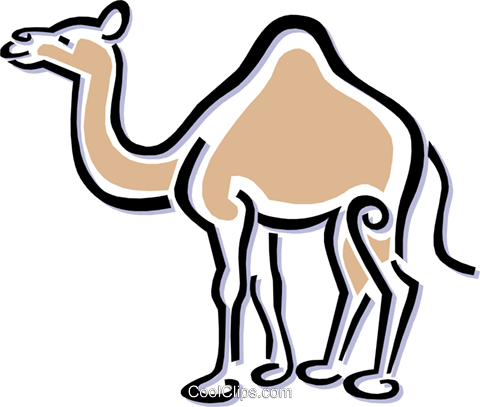 camel Royalty Free Vector Clip Art illustration anim1510