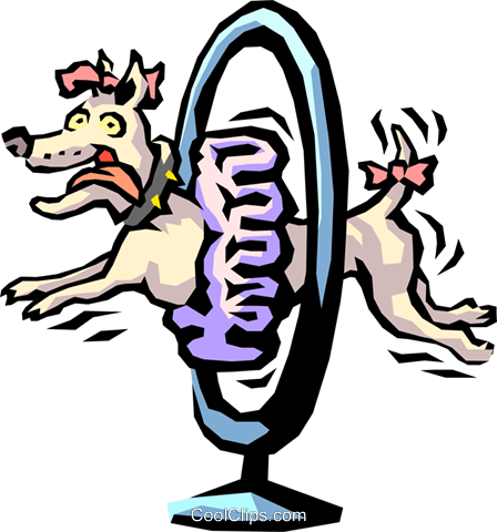 show dog jumping through hoop Royalty Free Vector Clip Art illustration anim1523