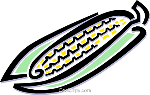 cob of corn Royalty Free Vector Clip Art illustration food0758