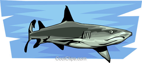 sharks Royalty Free Vector Clip Art illustration anim1526