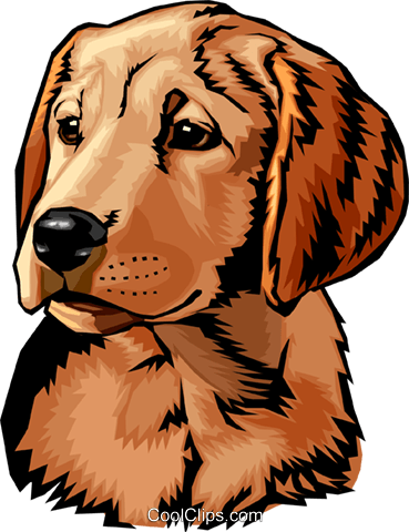 dog Royalty Free Vector Clip Art illustration anim1529