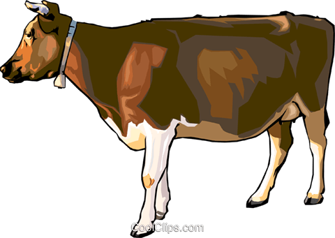 cow Royalty Free Vector Clip Art illustration anim1532