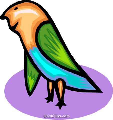 bird Royalty Free Vector Clip Art illustration anim1571