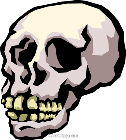 skull Royalty Free Vector Clip Art illustration cart2159
