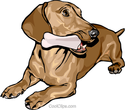 dog Royalty Free Vector Clip Art illustration anim1594