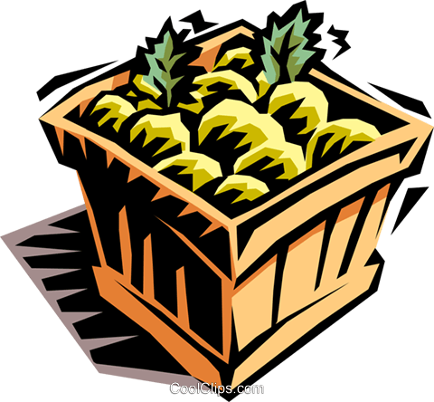 case of fruit Royalty Free Vector Clip Art illustration food0845