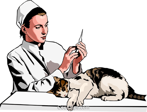 vet preparing injection for cat Royalty Free Vector Clip Art illustration peop2418