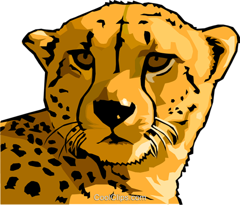 cheetah Royalty Free Vector Clip Art illustration anim1602