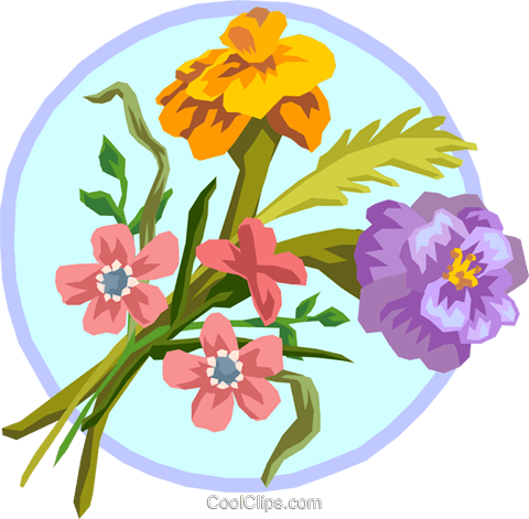 Marigold bouquet Royalty Free Vector Clip Art illustration natu0785