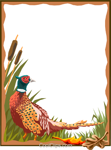 pheasant border Royalty Free Vector Clip Art illustration text1567