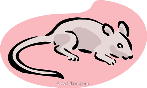 mouse Royalty Free Vector Clip Art illustration anim1637