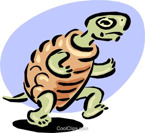 turtle racing on hind legs Royalty Free Vector Clip Art illustration anim1640