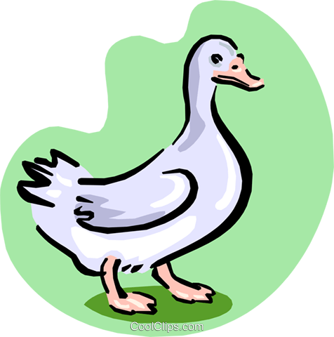 white goose Royalty Free Vector Clip Art illustration anim1644