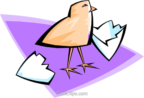hatched chick Royalty Free Vector Clip Art illustration anim1651