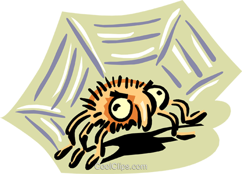 big eyed spider Royalty Free Vector Clip Art illustration anim1655