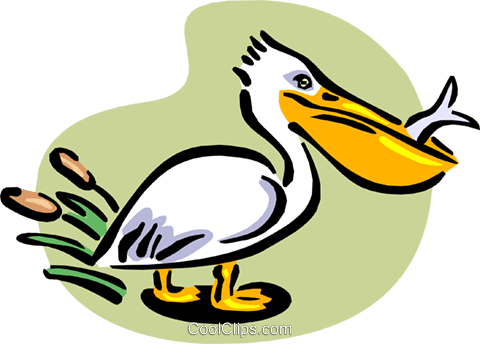 pelican with fish Royalty Free Vector Clip Art illustration anim1659