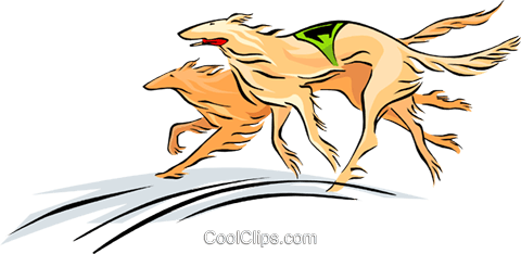 race dogs Royalty Free Vector Clip Art illustration anim1680