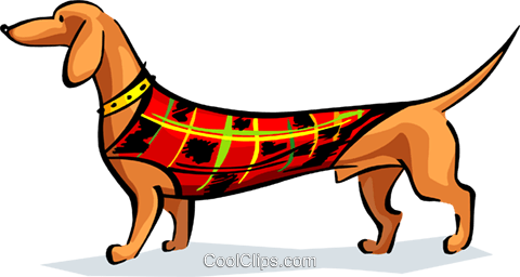 sausage dog in coat Royalty Free Vector Clip Art illustration anim1684