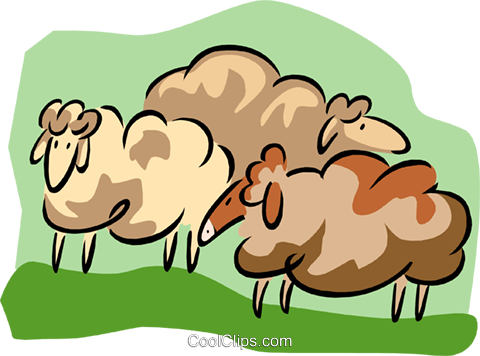 sheep Royalty Free Vector Clip Art illustration anim1736