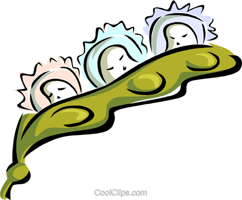 triplets in a peapod - cartoon concept Royalty Free Vector Clip Art illustration peop2628