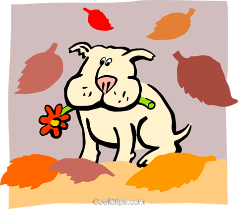 dog with autumn leaves Royalty Free Vector Clip Art illustration anim1744