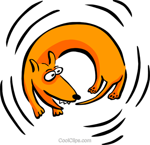 dog chasing his tail Royalty Free Vector Clip Art illustration anim1749