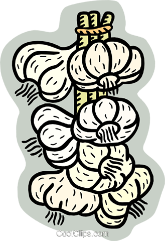 garlic Royalty Free Vector Clip Art illustration food0936