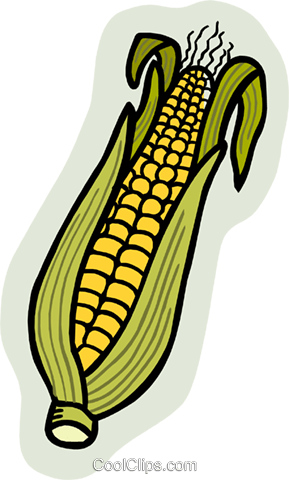 corn Royalty Free Vector Clip Art illustration food0941