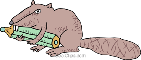 beaver with a pencil Royalty Free Vector Clip Art illustration anim1805