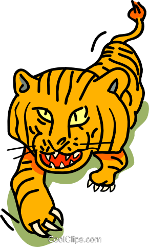 tiger Royalty Free Vector Clip Art illustration anim1808