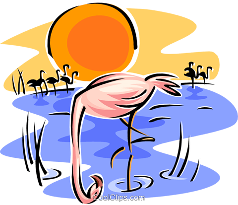 flamingo Royalty Free Vector Clip Art illustration anim1840