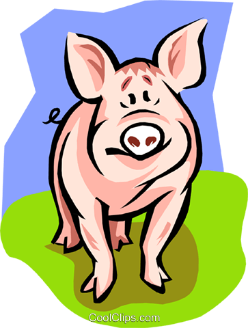 pig Royalty Free Vector Clip Art illustration anim1843