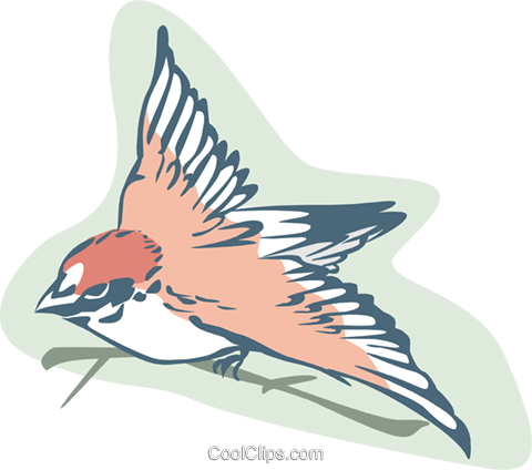 sparrow bird Royalty Free Vector Clip Art illustration anim1852