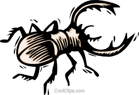 beetle Royalty Free Vector Clip Art illustration anim1855