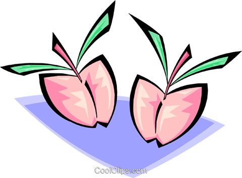 peaches Royalty Free Vector Clip Art illustration food1015