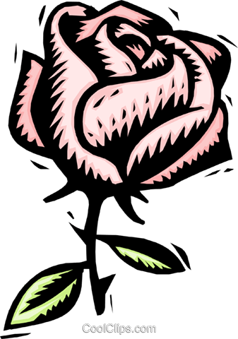 rose Royalty Free Vector Clip Art illustration natu0836
