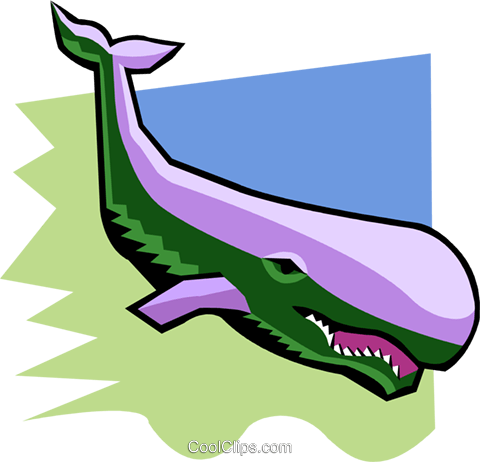 whale Royalty Free Vector Clip Art illustration anim1945
