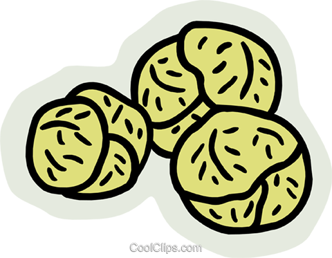 cabbage Royalty Free Vector Clip Art illustration food1045