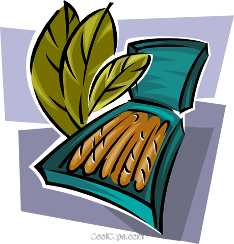 tobacco with cigars Royalty Free Vector Clip Art illustration natu0866