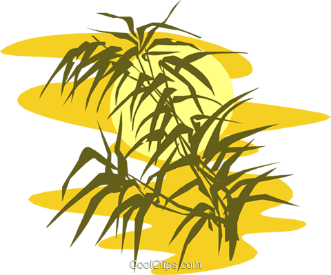 bamboo against sunset Royalty Free Vector Clip Art illustration natu0869