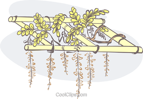 hanging plants Royalty Free Vector Clip Art illustration natu0877