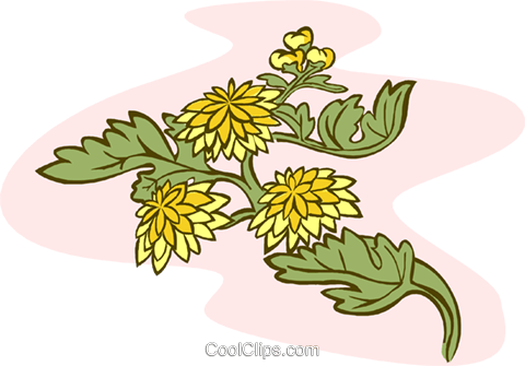 flowers Royalty Free Vector Clip Art illustration natu0894