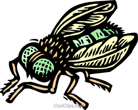 fly Royalty Free Vector Clip Art illustration anim2024