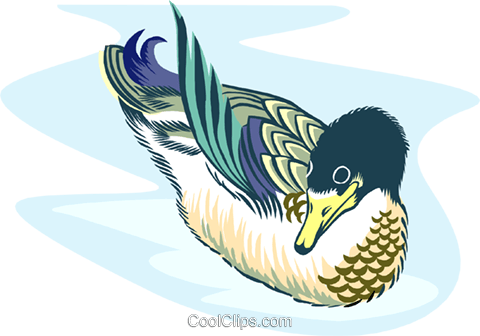 duck Royalty Free Vector Clip Art illustration anim2029