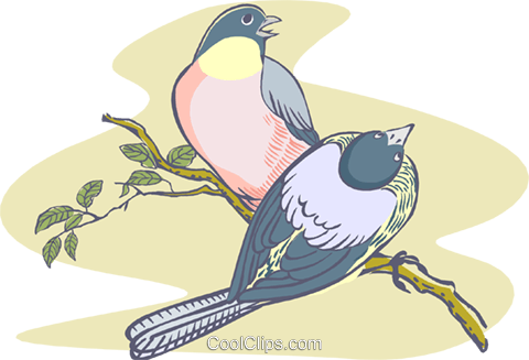 Birds on a branch Royalty Free Vector Clip Art illustration anim2030