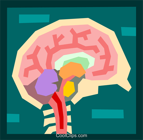 medical/the brain Royalty Free Vector Clip Art illustration medi0343