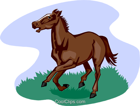 horse Royalty Free Vector Clip Art illustration anim2035
