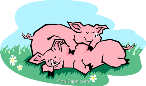 pigs sleeping Royalty Free Vector Clip Art illustration anim2036