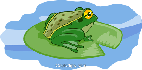 frog Royalty Free Vector Clip Art illustration anim2040