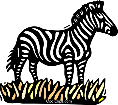 zebra Royalty Free Vector Clip Art illustration anim2044
